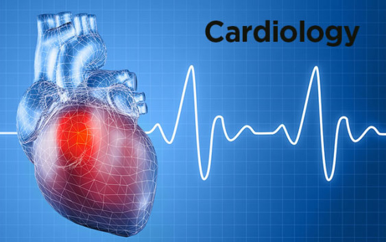Interventional Cardiology Fellowships: How to Apply?